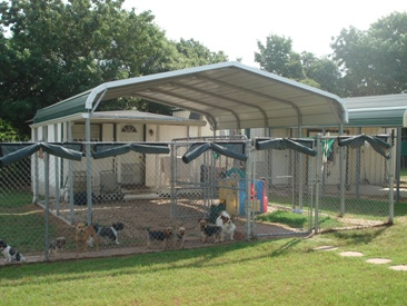 Large-Outdoor-Dog-Kennel-Cheap.jpg (1024×768)